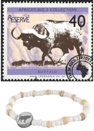 Big-5-Buffalo-02-686x1024 (2)