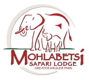 Logo - elephant & calf