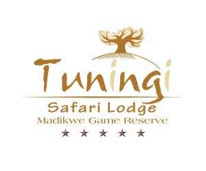 Tuningi Logo with Stars
