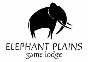 elephant plains